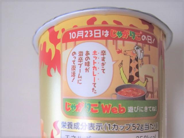 激辛インドカレー味6
