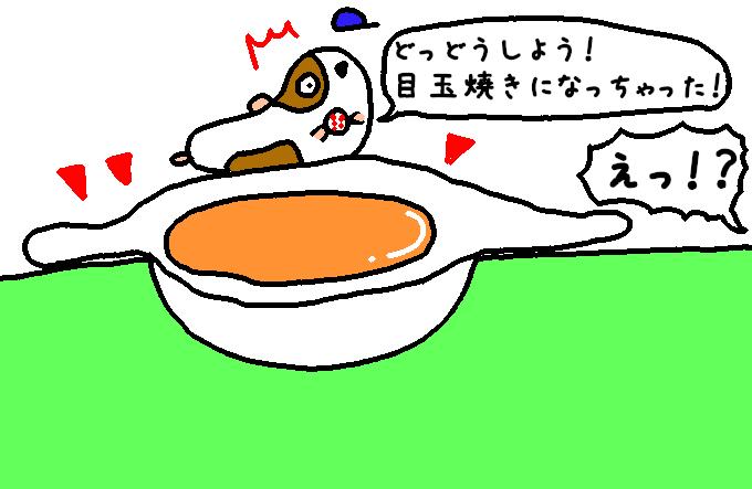 た〇ごポケット11