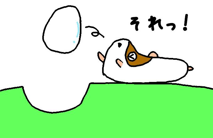 た〇ごポケット6
