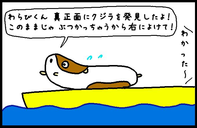 マッコウクジラ5