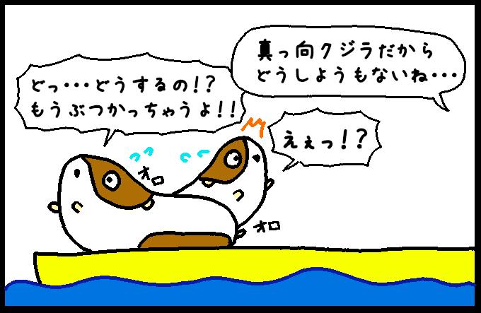 マッコウクジラ12