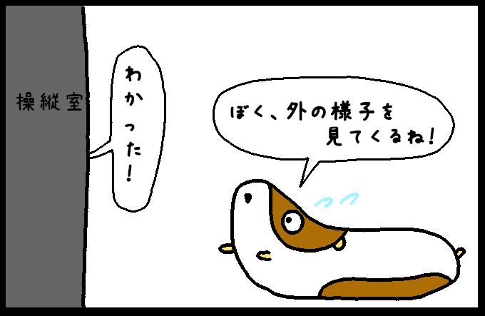 フンボルトイカ3-5
