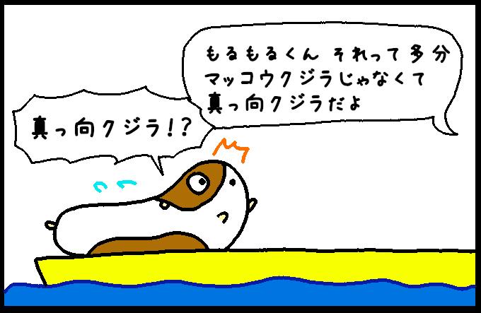 マッコウクジラ11