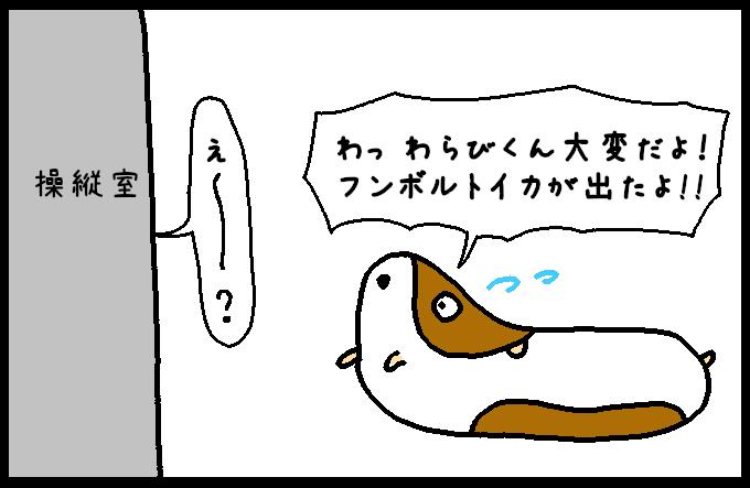 フンボルトイカ2-7