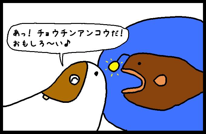 フンボルトイカ2-5
