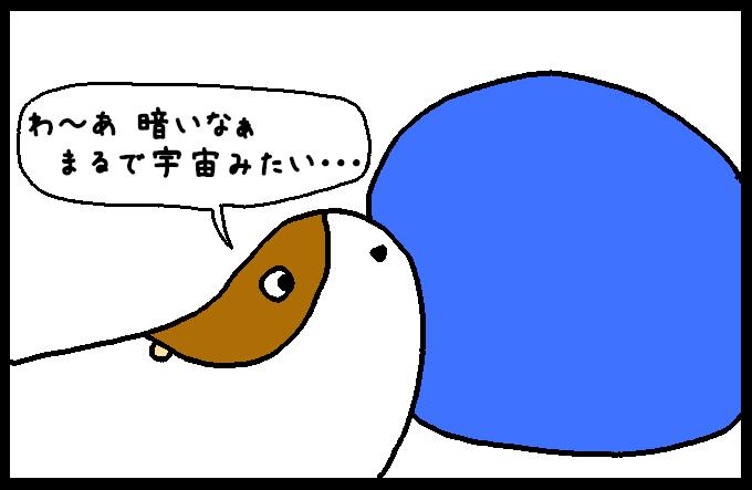 フンボルトイカ2-4