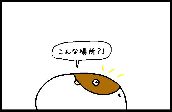お化け屋敷2-4