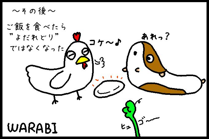 よだれ鶏10