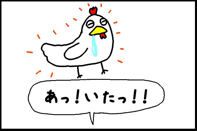 よだれ鶏5
