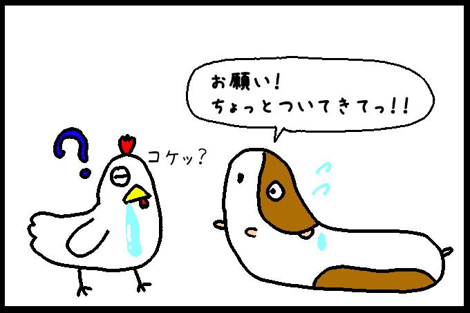 よだれ鶏6