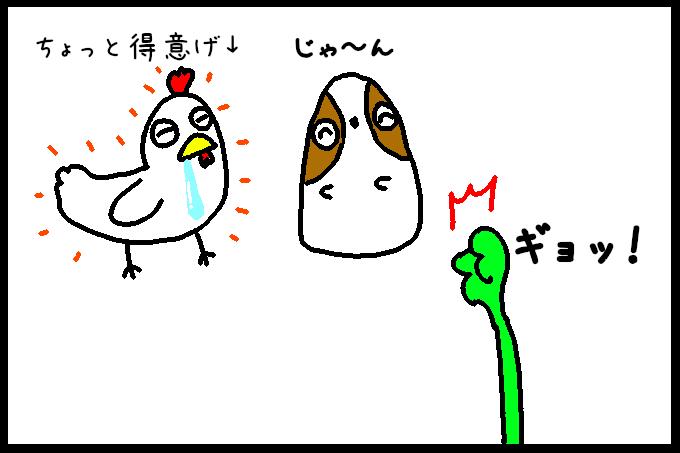 よだれ鶏8